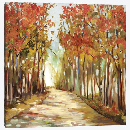 Sunny Path Canvas Print #ALP196} by Allison Pearce Canvas Art Print
