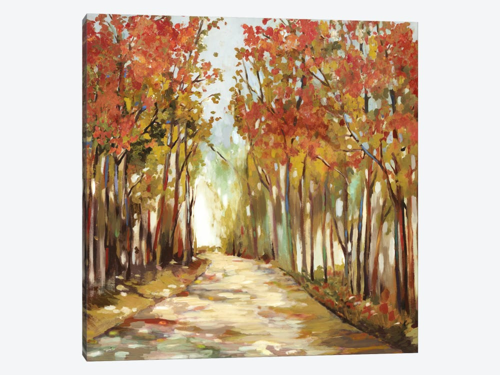 Sunny Path by Allison Pearce 1-piece Canvas Art