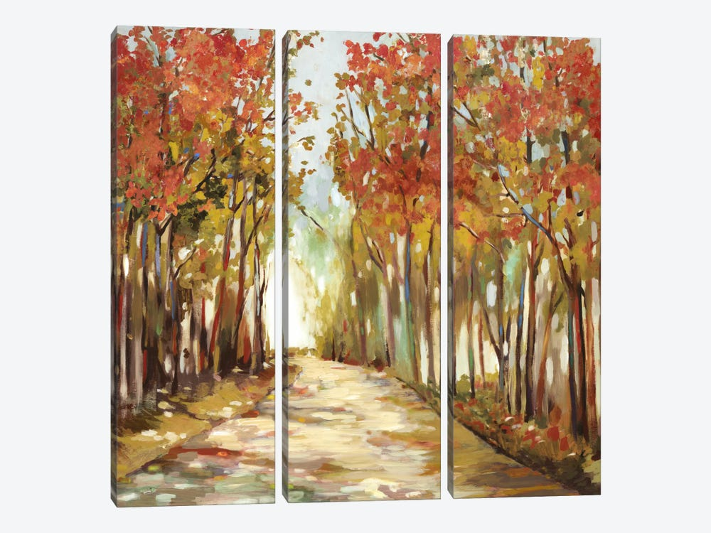 Sunny Path by Allison Pearce 3-piece Canvas Wall Art