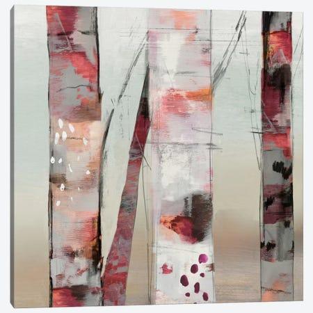 Sunset Birch III Canvas Print #ALP199} by Allison Pearce Canvas Artwork