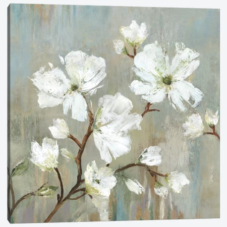 Sweetbay Magnolia I Canvas Print #ALP206} by Allison Pearce Canvas Print