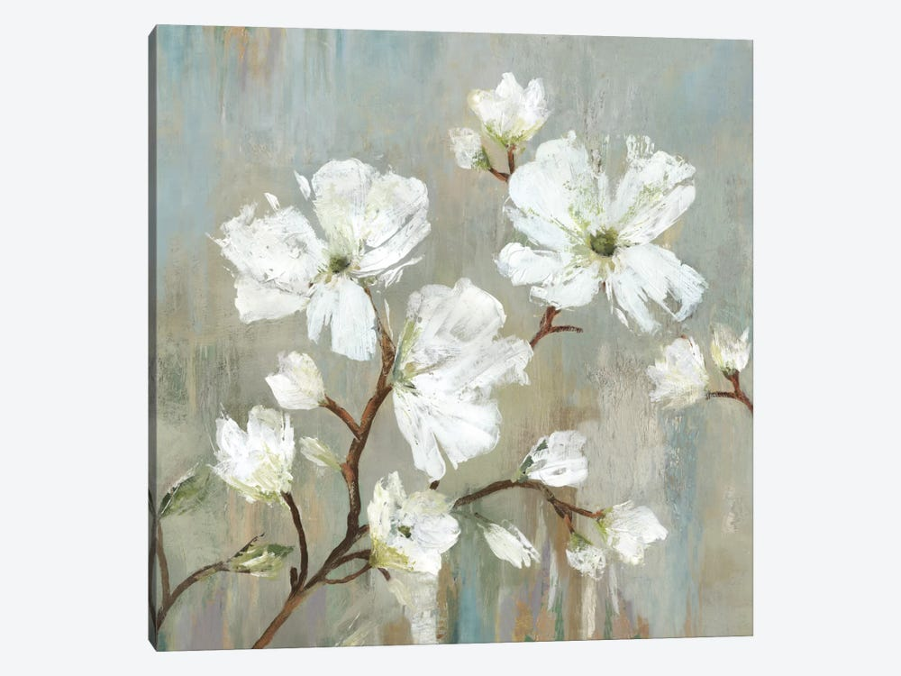 Sweetbay Magnolia I by Allison Pearce 1-piece Canvas Print