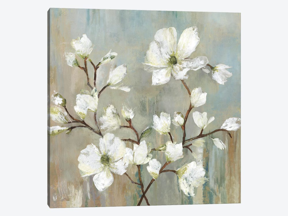 Sweetbay Magnolia II by Allison Pearce 1-piece Canvas Artwork
