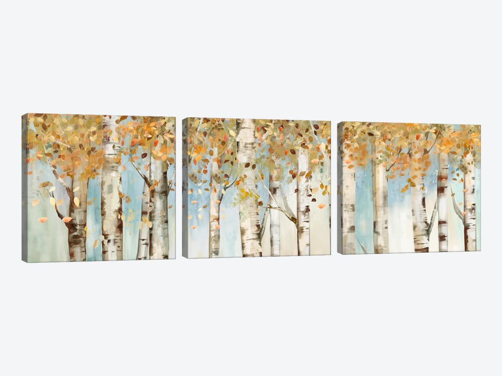 Birch Country by Allison Pearce 3-piece Canvas Art