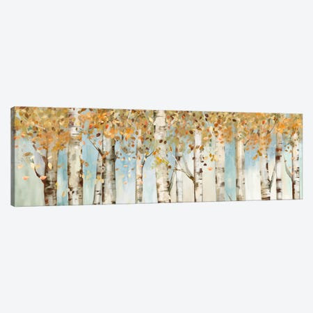 Birch Country Canvas Print #ALP20} by Allison Pearce Art Print
