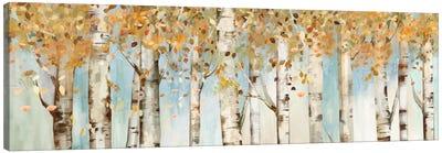 Birch Country Canvas Art Print