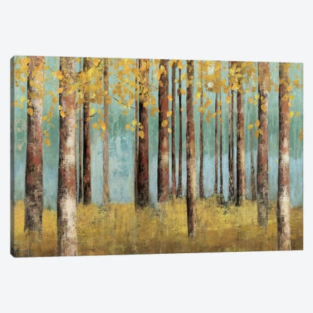 Teal Birch Canvas Print #ALP210} by Allison Pearce Canvas Art Print