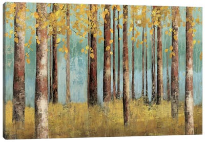 Teal Birch Canvas Art Print