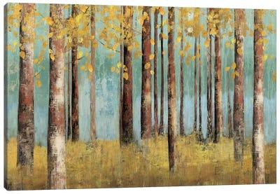 Teal Birch Canvas Art Print