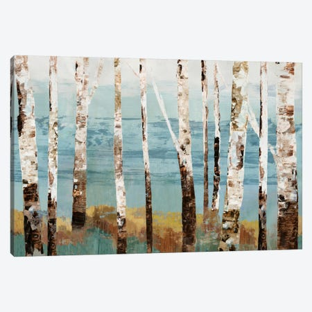Birch Reflection Canvas Print #ALP21} by Allison Pearce Canvas Art Print