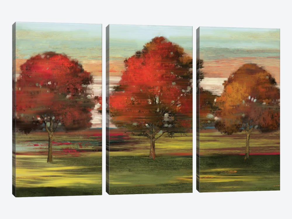Trees In Motion by Allison Pearce 3-piece Canvas Print