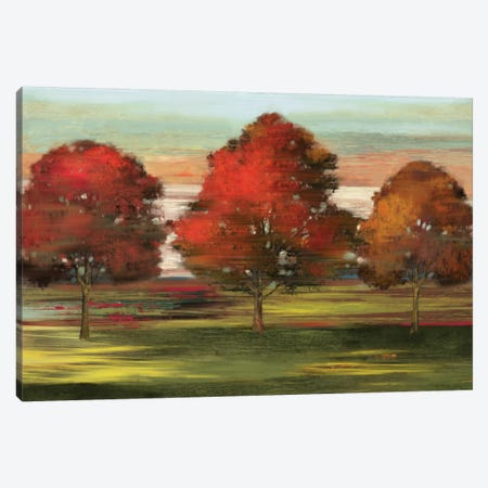 Trees In Motion Canvas Print #ALP220} by Allison Pearce Canvas Wall Art