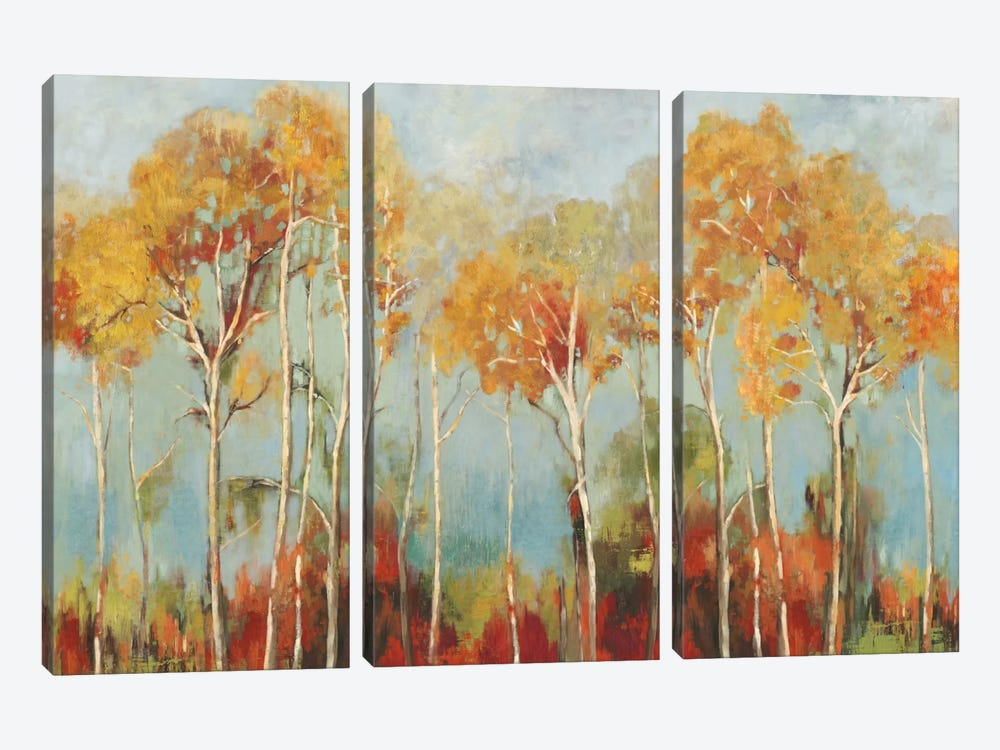 Up Front by Allison Pearce 3-piece Canvas Artwork