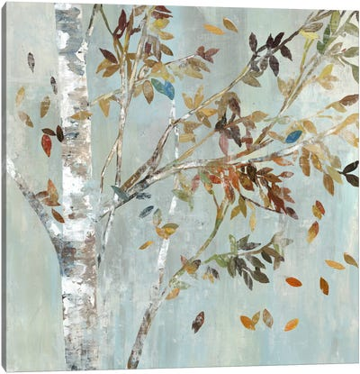 Birch With Leaves I Canvas Art Print