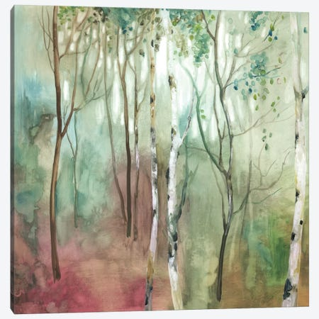 Birch In The Fog I Canvas Print #ALP231} by Allison Pearce Canvas Print