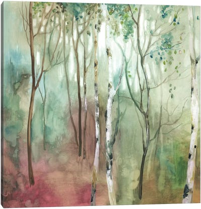 Birch In The Fog I Canvas Art Print