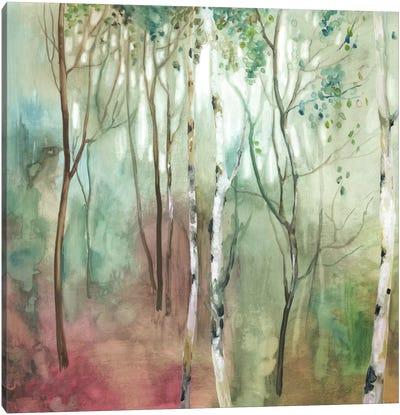 Birch In The Fog I Canvas Art Print