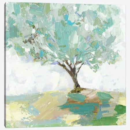 Pear Tree Canvas Print #ALP239} by Allison Pearce Canvas Print