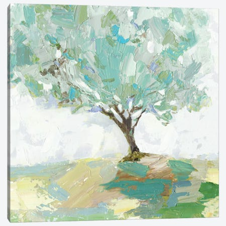 Pear Tree Canvas Print #ALP239} by Allison Pearce Canvas Print