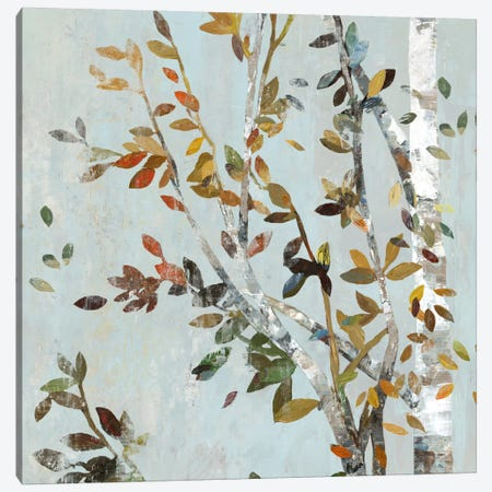 Birch With Leaves II Canvas Print #ALP23} by Allison Pearce Canvas Art Print