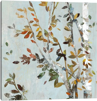 Birch With Leaves II Canvas Art Print