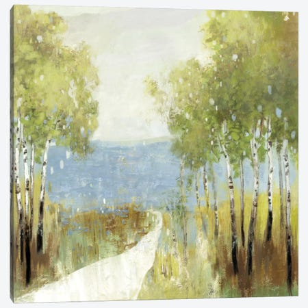 Serenity Canvas Print #ALP242} by Allison Pearce Canvas Artwork