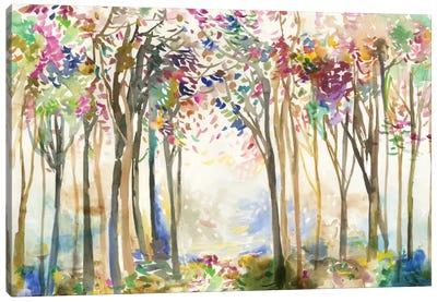 Sunny Path II Canvas Art Print