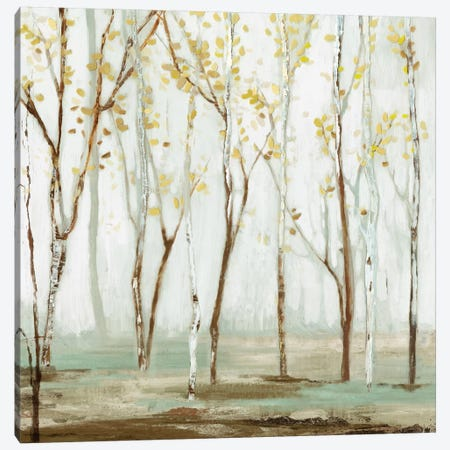 White On White Landscape Canvas Print #ALP250} by Allison Pearce Art Print
