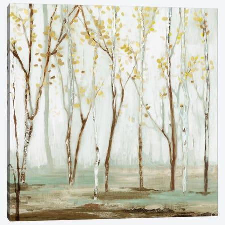 White On White Landscape Canvas Print #ALP250} by Allison Pearce Art Print