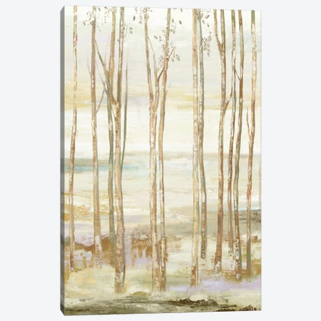 White On White Trees Canvas Print #ALP251} by Allison Pearce Canvas Print