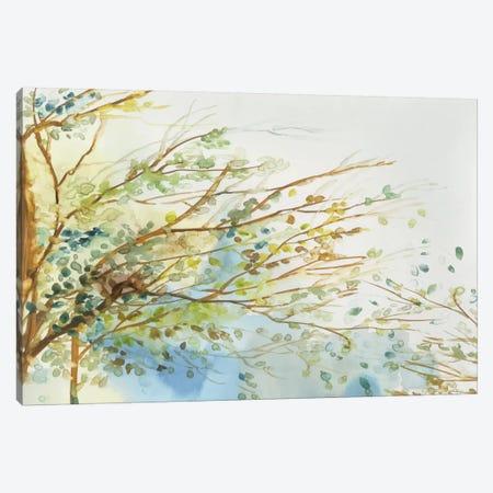 Windblown Canvas Print #ALP252} by Allison Pearce Canvas Print