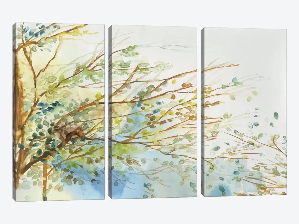 Windblown by Allison Pearce 3-piece Canvas Art