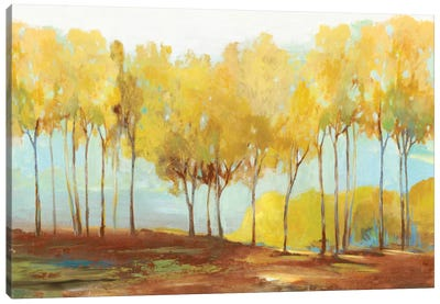 Yellow Trees Canvas Art Print