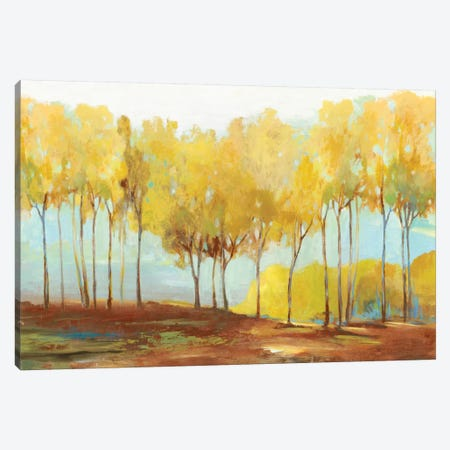 Yellow Trees 3-Piece Canvas #ALP253} by Allison Pearce Canvas Print