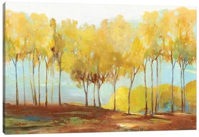 Yellow Trees Canvas Art Print