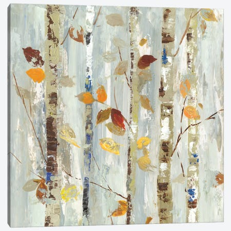 Autumn Petals Canvas Print #ALP257} by Allison Pearce Canvas Art