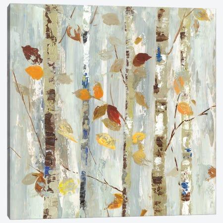 Autumn Petals Canvas Print #ALP257} by Allison Pearce Canvas Art