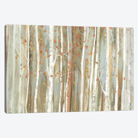 Birch Bark Canvas Print #ALP259} by Allison Pearce Canvas Print