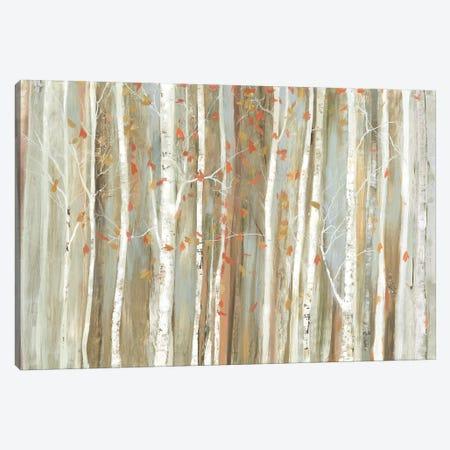 Birch Bark 3-Piece Canvas #ALP259} by Allison Pearce Canvas Print