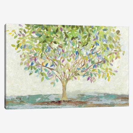 Colorful Oxygen Canvas Print #ALP262} by Allison Pearce Canvas Wall Art