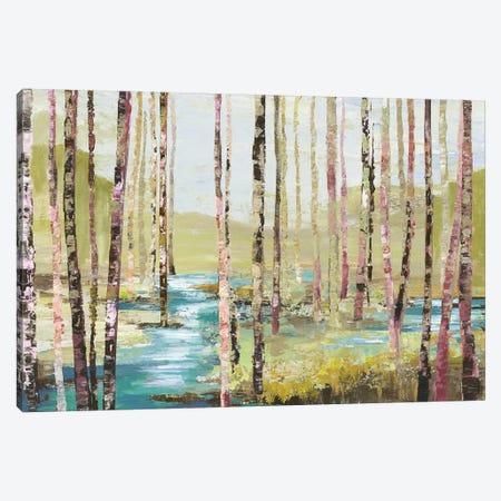 Group Of Birch Canvas Print #ALP266} by Allison Pearce Canvas Print
