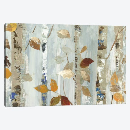 Leaves On Birch Canvas Print #ALP268} by Allison Pearce Canvas Artwork