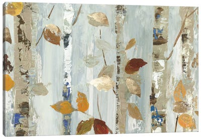Leaves On Birch Canvas Art Print