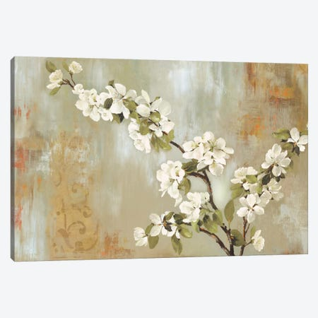 Blossoms In Bloom Canvas Print #ALP26} by Allison Pearce Canvas Wall Art