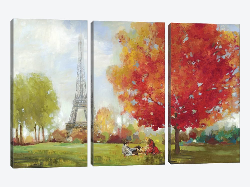 Paris Field by Allison Pearce 3-piece Canvas Print
