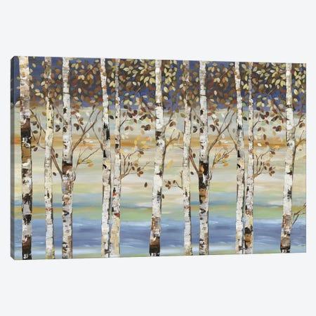 Dark Birch III  Canvas Print #ALP283} by Allison Pearce Canvas Artwork