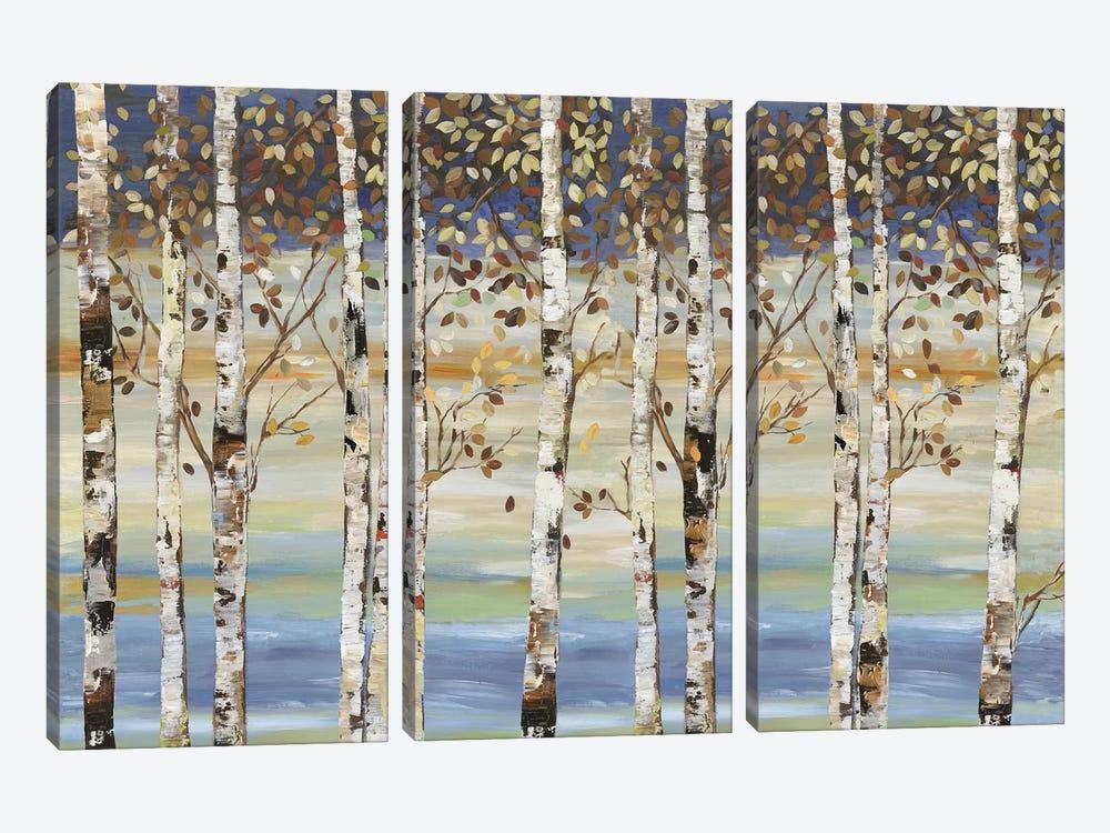 Dark Birch III  by Allison Pearce 3-piece Canvas Artwork