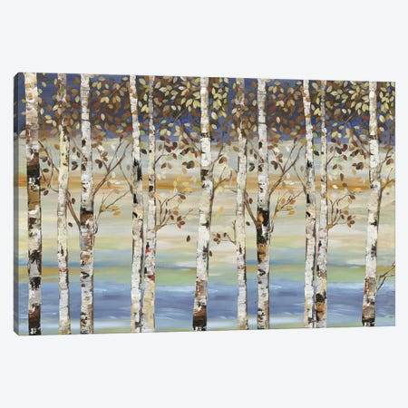 Dark Birch III  Canvas Print #ALP283} by Allison Pearce Canvas Artwork