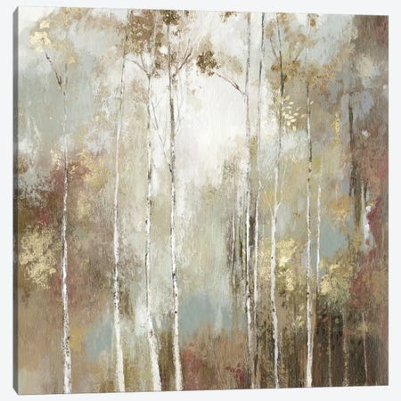 Fine Birch I Canvas Print #ALP285} by Allison Pearce Art Print