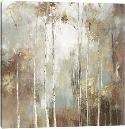 Fine Birch I Canvas Art Print